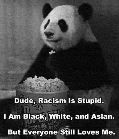 src=/files/Image/NEWS/2014/MAIOS/04-05/panda.jpg