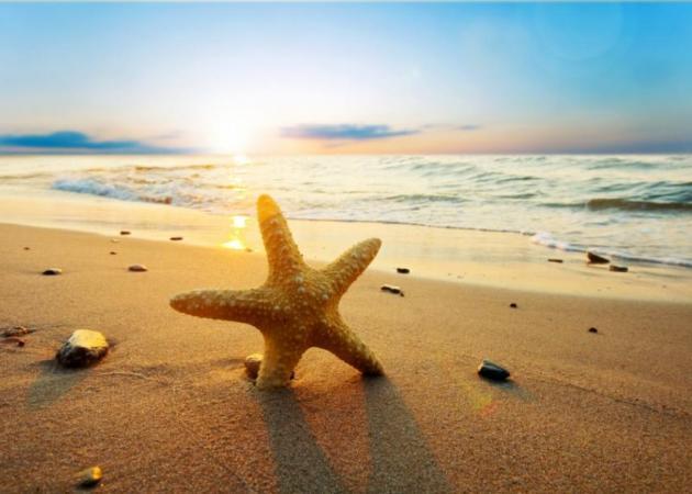 Επιτέλους διακοπές! | tlife.gr
