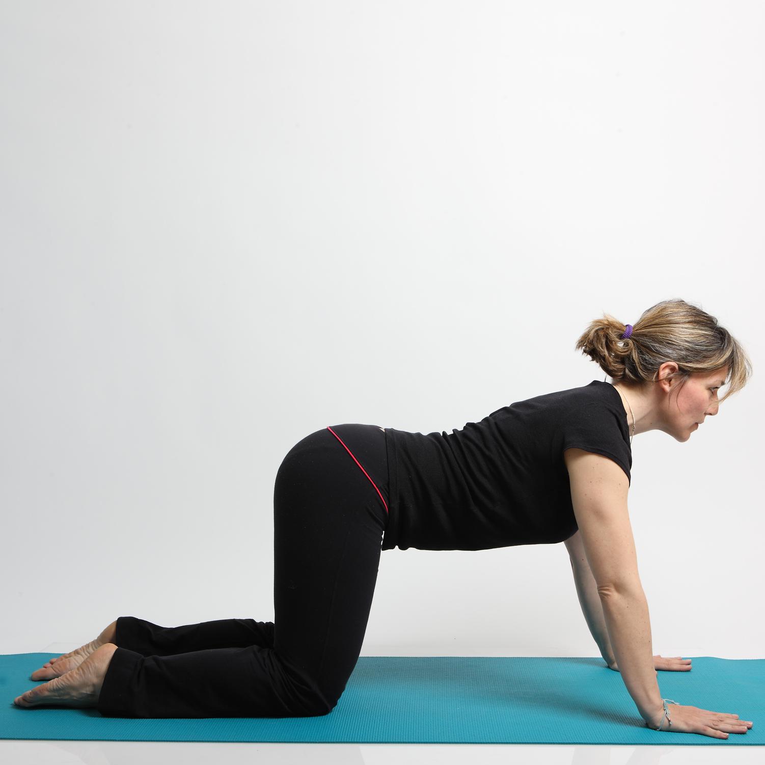 5   Yoga The Cat Move