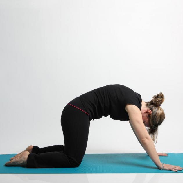 4   Yoga The Cat Move Βήμα 2ο