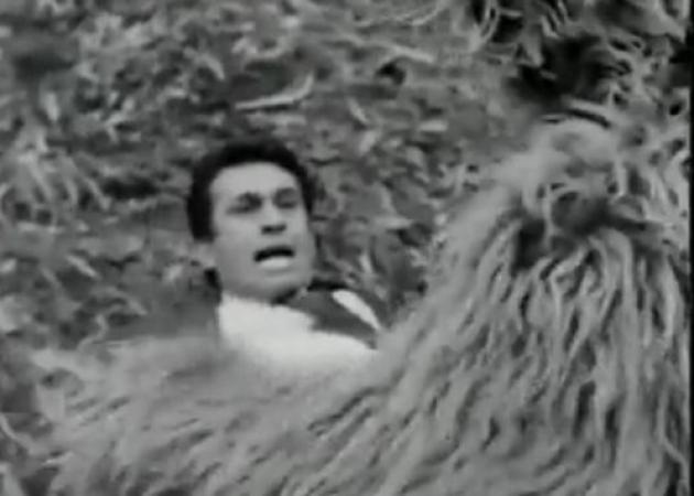 """Όταν ο Νίκος Ξανθόπουλος τα έβαζε με αρκούδα 47 χρόνια πριν – """"Γατάκι"""" Ντι Κάπριο!"""