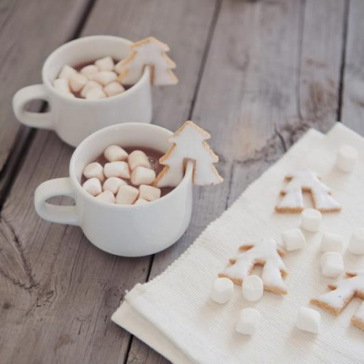 Ζεστή σοκολάτα με μπισκοτάκια ελατάκι και ginger marshmallows | tlife.gr