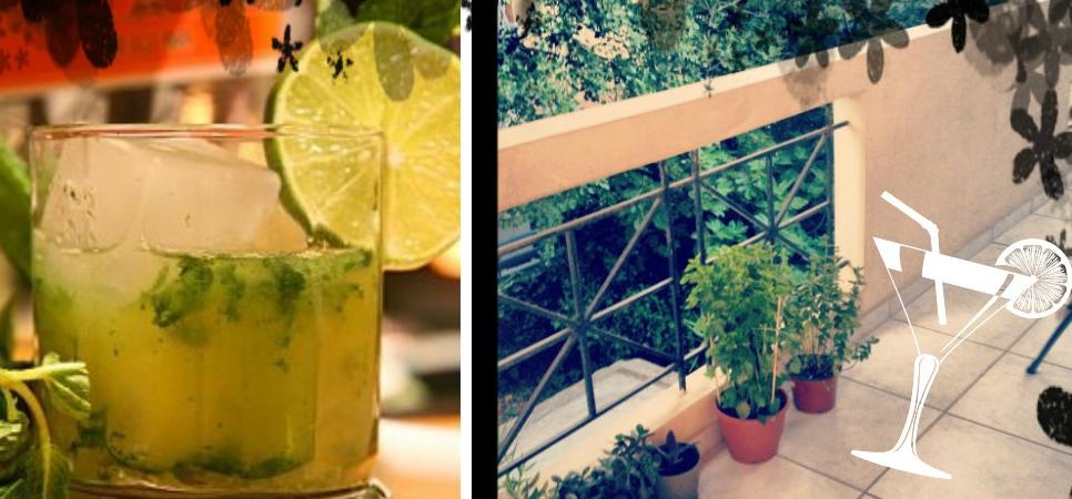 Mojito – land! Ένα φυτό μπορεί να φέρει ολόκληρο το καλοκαίρι!