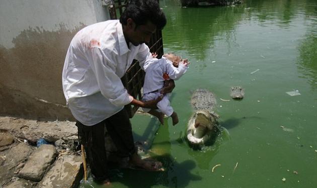 Σοκ! Πατέρας κουνά το μωρό του πάνω από πεινασμένο κροκόδειλο! | tlife.gr