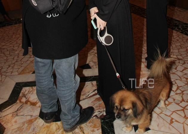 Ποια ηθοποιός πήγε σε επίσημη θεατρική πρεμιέρα με το σκύλο της;   tlife.gr