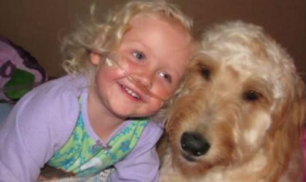 Σκύλος δίνει ζωή σε ένα κοριτσάκι – Το video που συγκινεί