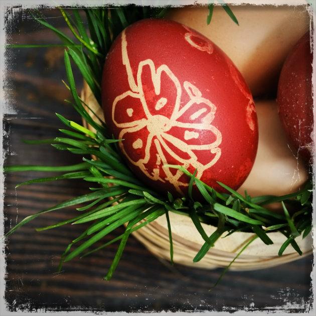 9 | Σχέδια στα αυγά; Αρκεί να επιστρατεύσεις το φυτολόγιό σου