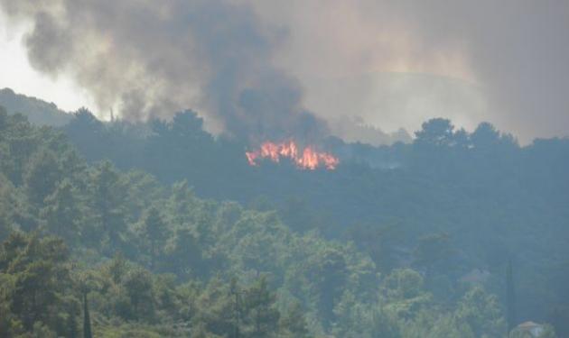 Φωτιά σε δάσος στη Σάμο!