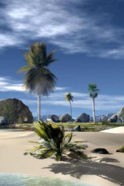 3 | 3. H βλάστηση του νησιού