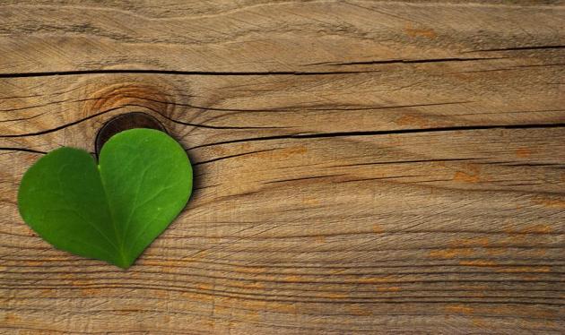 Η καταλυτική δύναμη της αγάπης! | tlife.gr