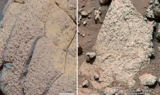 Βρήκαν… ζωή στον Άρη!