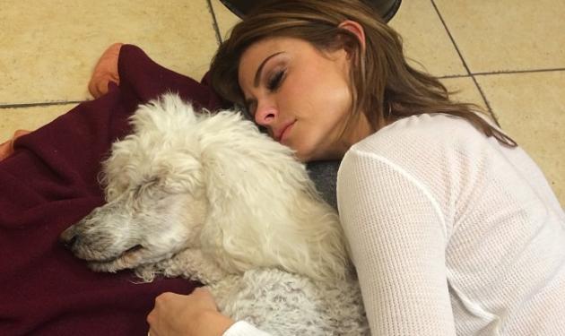 Maria Menounos: Θλιμμένη γιατί πέθανε το αγαπημένο της, σκυλάκι! | tlife.gr