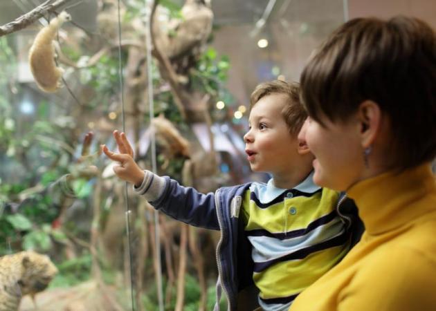 Βόλτα στο μουσείο: Tips για μια ευχάριστη και διδακτική εμπειρία | tlife.gr