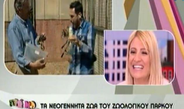 X. Nέζος: Του επιτέθηκε φίδι στον αέρα της εκπομπής | tlife.gr
