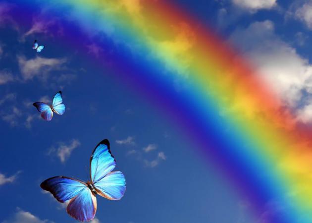 Τα χρώματα σε γιατρεύουν! | tlife.gr