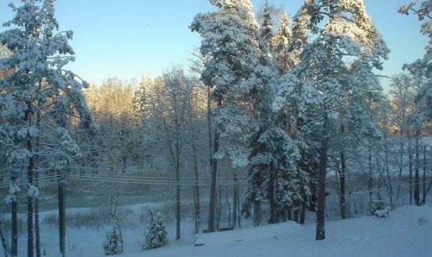 Χαμηλές θερμοκρασίες και χιόνι σ' όλη τη χώρα! | tlife.gr