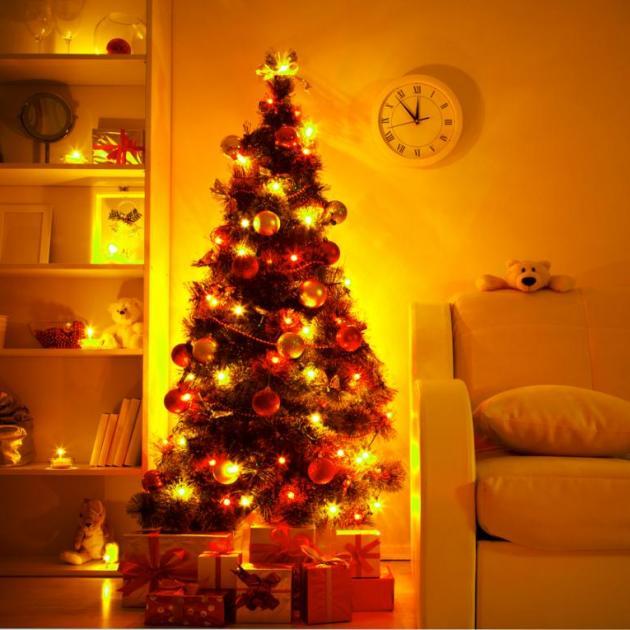 Τα μυστικά του… χριστουγεννιάτικου δέντρου! | tlife.gr