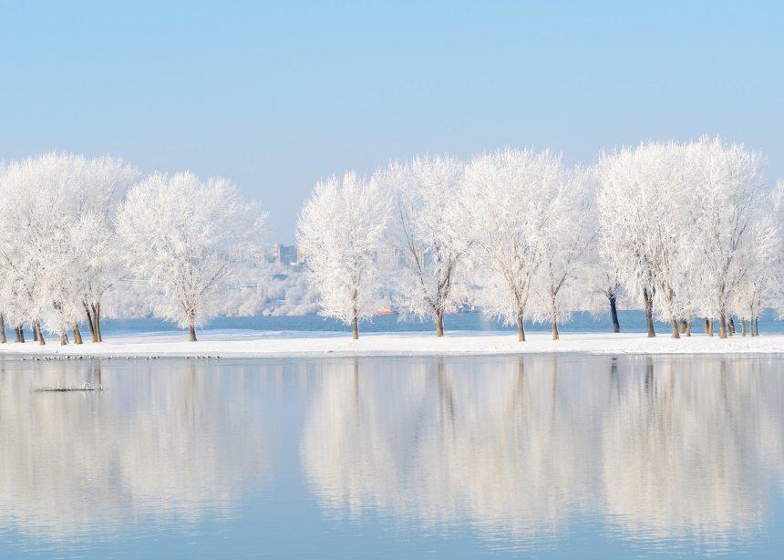 ΜΗΝΙΑΙΕΣ ΠΡΟΒΛΕΨΕΙΣ – Ιανουάριος 2018: Πώς θα είναι ο μήνας σου σύμφωνα με το ζώδιό σου; | tlife.gr