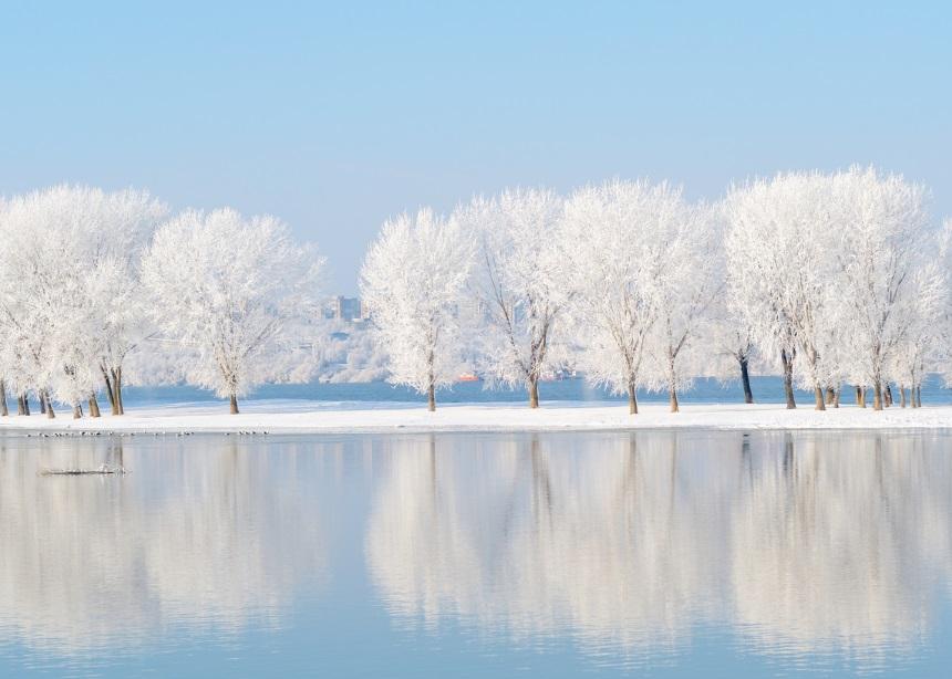 ΜΗΝΙΑΙΕΣ ΠΡΟΒΛΕΨΕΙΣ – Ιανουάριος 2018: Πώς θα είναι ο μήνας σου σύμφωνα με το ζώδιό σου;