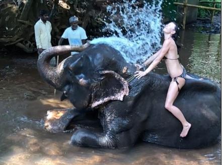 Μαρίνα Βερνίκου: Το απίστευτο βίντεο πάνω σε ελέφαντα! | tlife.gr