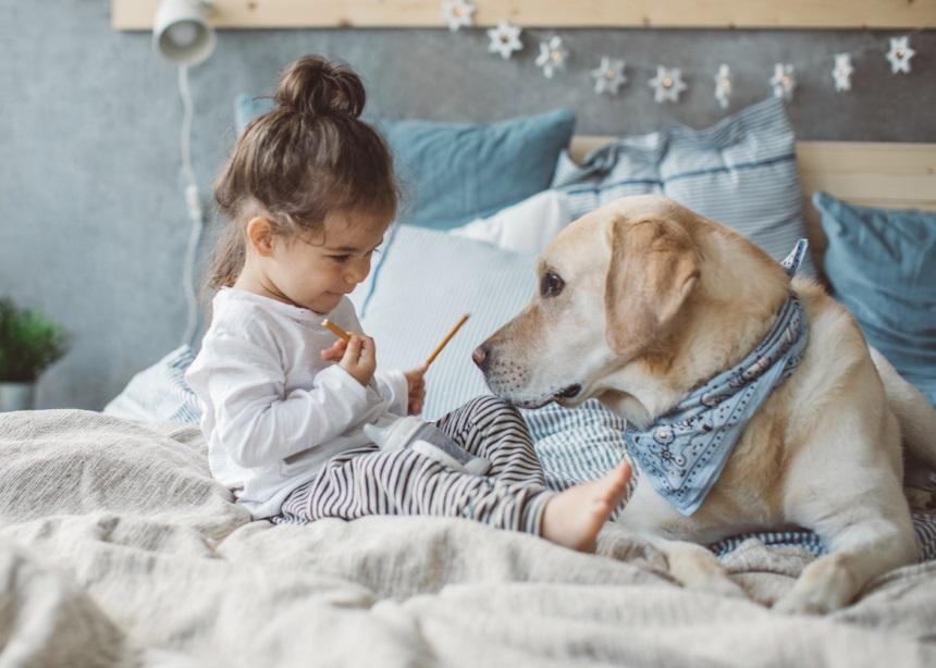Σκύλος στο σπίτι: Οι 10 καλύτεροι και πιο πιστοί φίλοι για το μικρό σου!