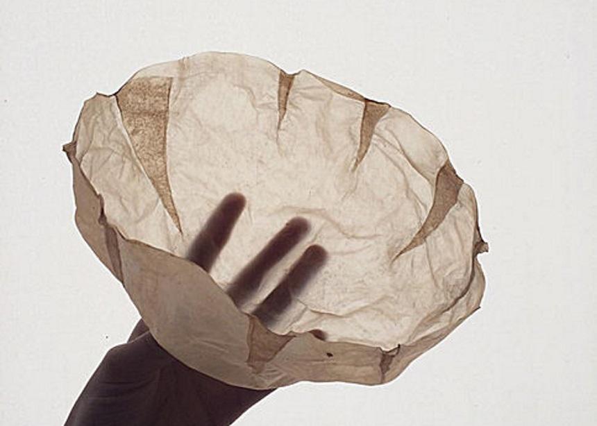 Scoby: Μία σχεδιάστρια καλλιεργεί βρώσιμη βιολογική μεμβράνη συσκευασίας τροφίμων   tlife.gr