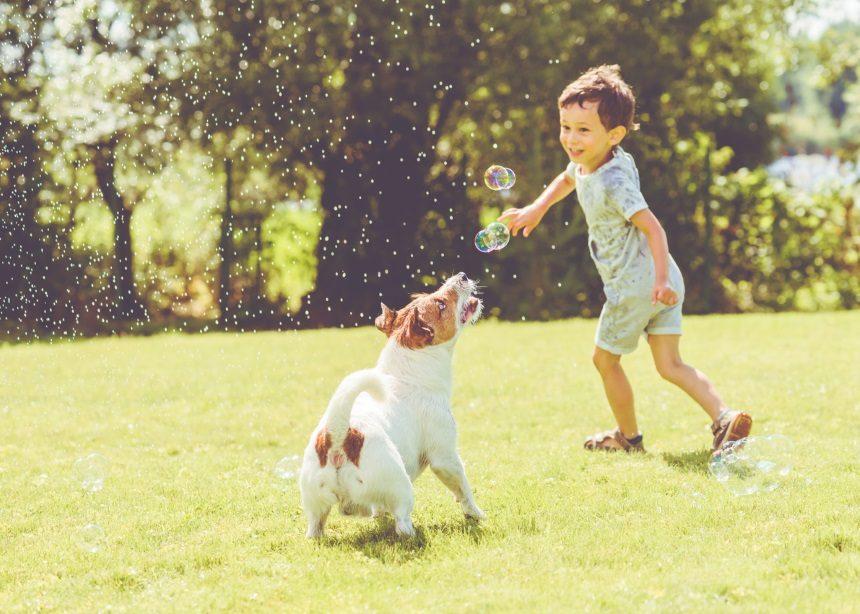 Παιδί και σκύλος: Πώς θα βοηθήσεις τα παιδιά να εξοικειωθούν με τους σκύλους | tlife.gr