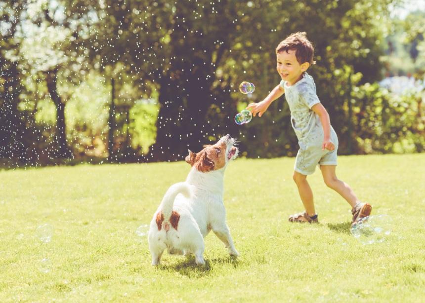 Παιδί και σκύλος: Πώς θα βοηθήσεις τα παιδιά να εξοικειωθούν με τους σκύλους