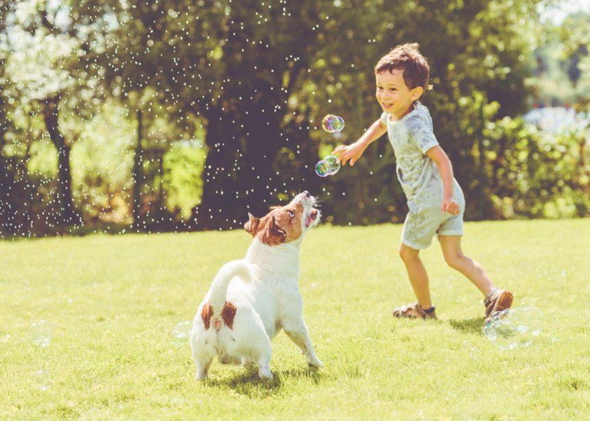 Τσίμπημα κουνουπιού: Πώς αντιμετωπίζεται η έντονη φαγούρα και τα παράπονα των παιδιών | tlife.gr