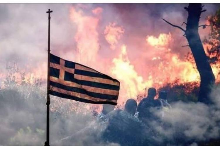 «'Ωρα Αλληλεγγύης»: Αυτό είναι το ποσό που κατάφερε να συγκεντρώσει ο ΑΝΤ1 για τους πυρόπληκτους συμπολίτες μας…   tlife.gr