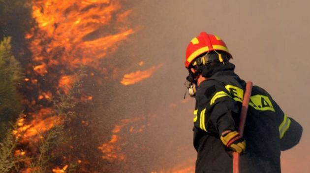Φωτιά στη Νέα Μάκρη – Συναγερμός στην Πυροσβεστική | tlife.gr