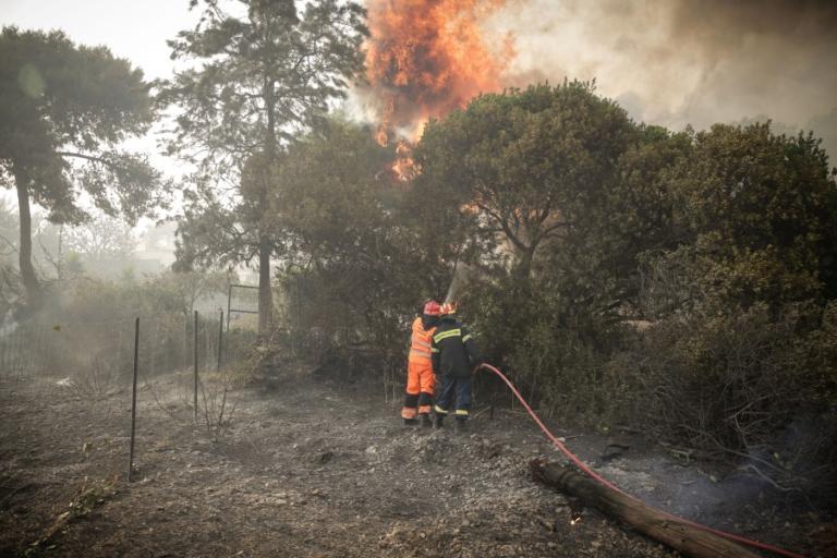 Φωτιά τώρα στον Σχοινιά | tlife.gr