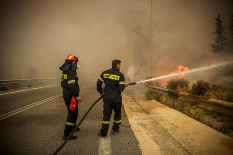 Συναγερμός στην Πυροσβεστική! Φωτιά στο Σέσι Γραμματικού στον Μαραθώνα | tlife.gr