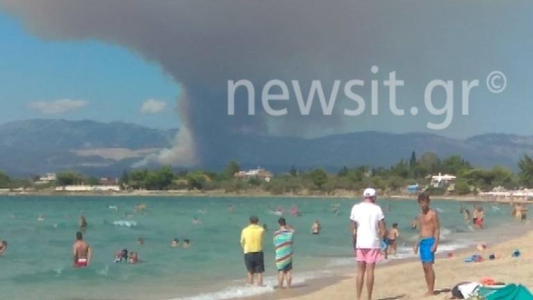 Εκκενώνονται χωριά στην Εύβοια – Οι φλόγες καίνε το χωριό Κοντοδεσπότι κοντά στα Ψαχνά – Τριπλό μέτωπο στην Εύβοια   tlife.gr