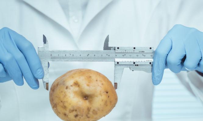 Μερίδες φαγητού: Πώς υπολογίζονται – Η σωστή ποσότητα για την δίαιτα [πίνακας] | tlife.gr