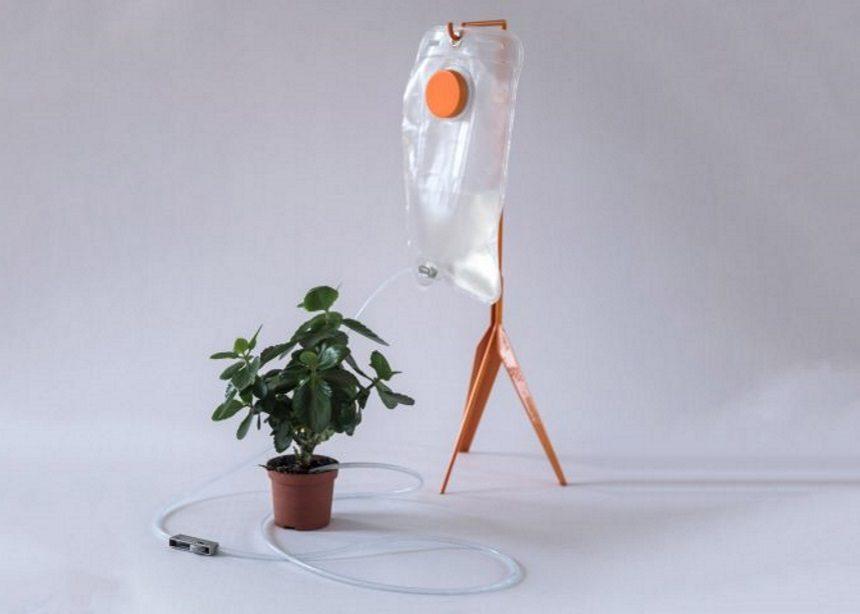 Αυτό το σύστημα… ενδοφλέβιου ορού για τα φυτά δεν είναι μόνο σωτήριο, αλλά και στιλάτο! | tlife.gr