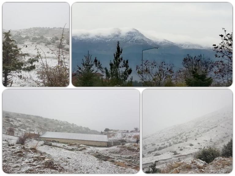 Χιόνια σε Ιωάννινα και Τρίκαλα – Οι πρώτες εικόνες | tlife.gr