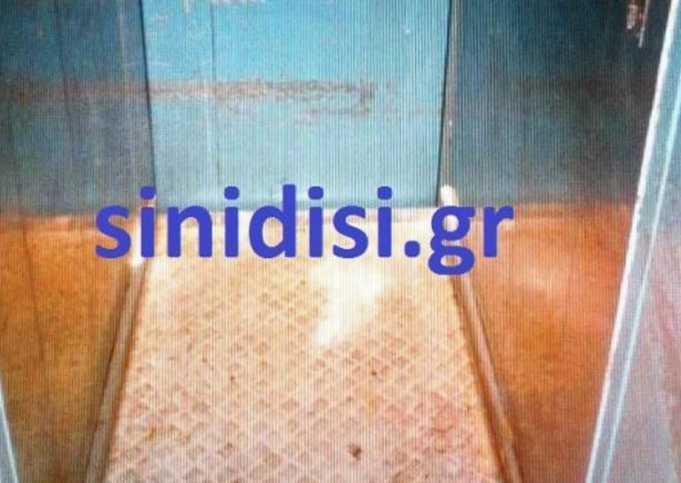 Κρήτη: Αυτό είναι το ασανσέρ ξενοδοχείου που πέθανε η 20χρονη Αλέκα – Οι τελευταίες στιγμές της φοιτήτριας [pics] | tlife.gr