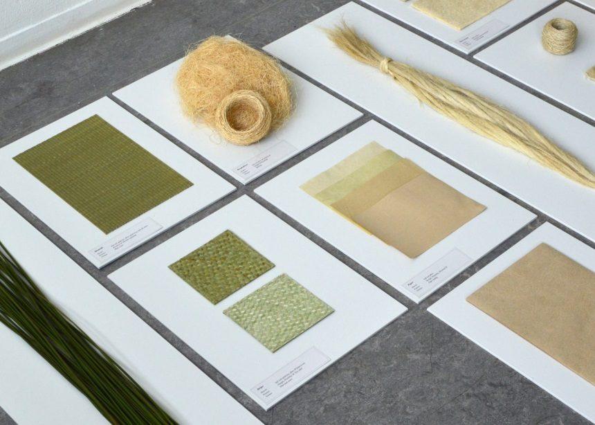 Medulla project: Όταν ο οικολογικός σχεδιασμός αγγίζει τις βαθύτερες πτυχές του design | tlife.gr