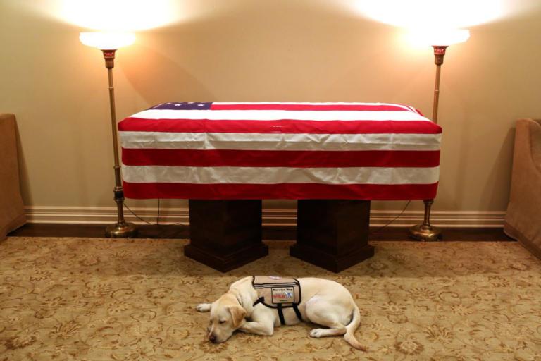 Τζορτζ Μπους: Η συγκινητική φωτογραφία μπροστά από το φέρετρό του | tlife.gr