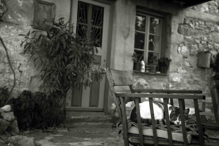 Έφυγαν αγκαλιασμένοι από τη ζωή στο κρεβάτι τους – Η ιστορία που ραγίζει καρδιές τα φετινά Χριστούγεννα!   tlife.gr