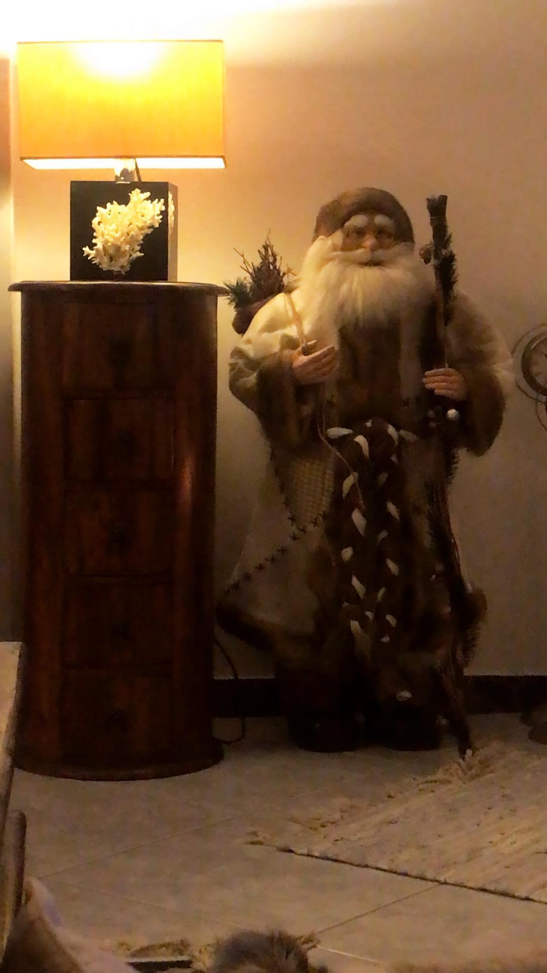 Μάγδα Τσέγκου: Μας δείχνει το στολισμένο, χριστουγεννιάτικο σαλόνι της! (εικόνες)