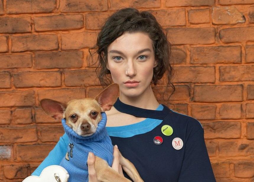Η καμπάνια για τη Pre – Fall συλλογή του Monse έχει φιλοζωικό χαρακτήρα και τα πιο cute σκυλάκια | tlife.gr