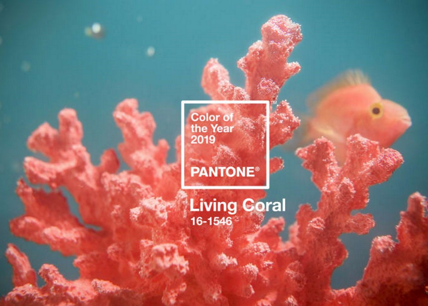 This just in: Η Pantone ανακοίνωσε το Χρώμα της Χρονιάς για το 2019 (και επιτέλους ήρθε στα συγκαλά της)! | tlife.gr