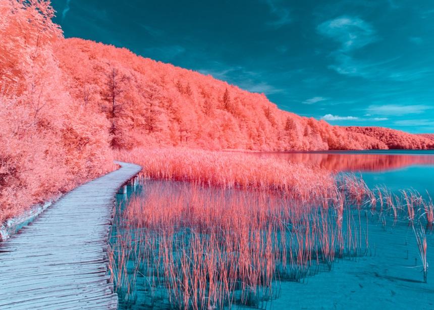 Color Institute: Τι μας έμαθαν τα 20 χρόνια που η Pantone μας δίνει το Χρώμα της Χρονιάς; | tlife.gr