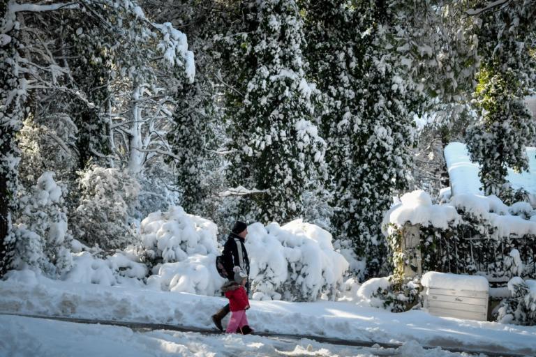Καιρός: Έρχεται νέος χιονιάς – Πού και πότε θα χιονίσει! | tlife.gr