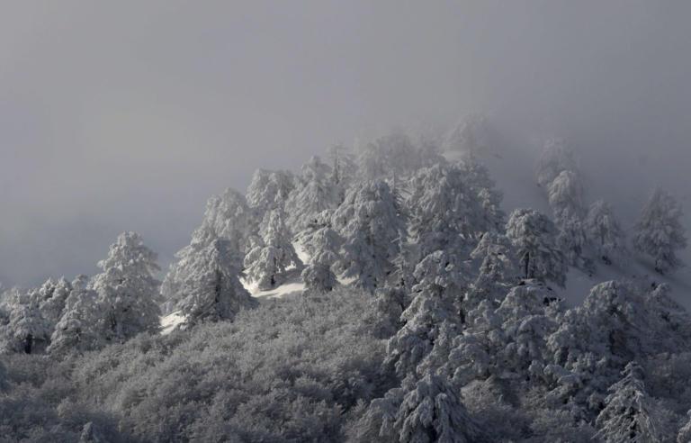 """Καιρός: Νέα """"επέλαση"""" του χιονιά και πτώση της θερμοκρασίας   tlife.gr"""
