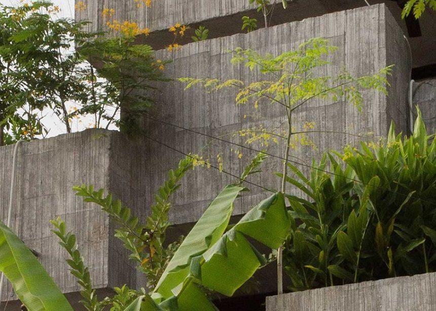 "Planter Box house: Ένα καινοτόμο σπίτι που λειτουργεί και ως ""γλάστρα"" για 40 είδη φυτών   tlife.gr"