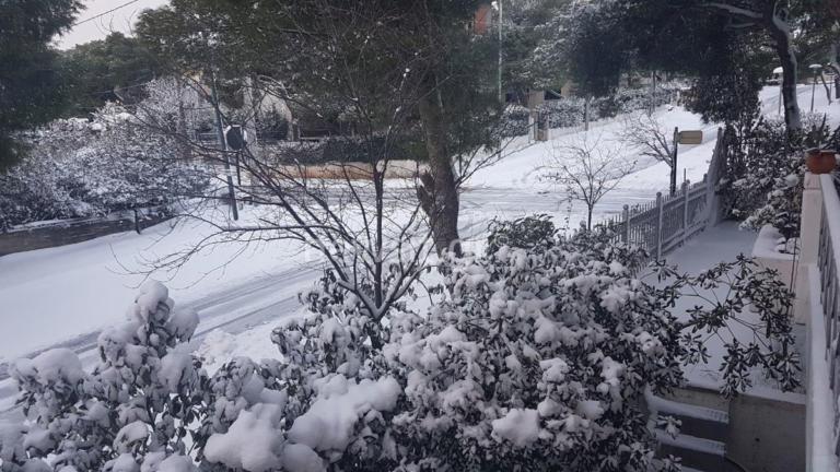 Καιρός: Νέα επιδείνωση αύριο με χιόνια και βροχές – Κίνδυνος πλημμύρας | tlife.gr