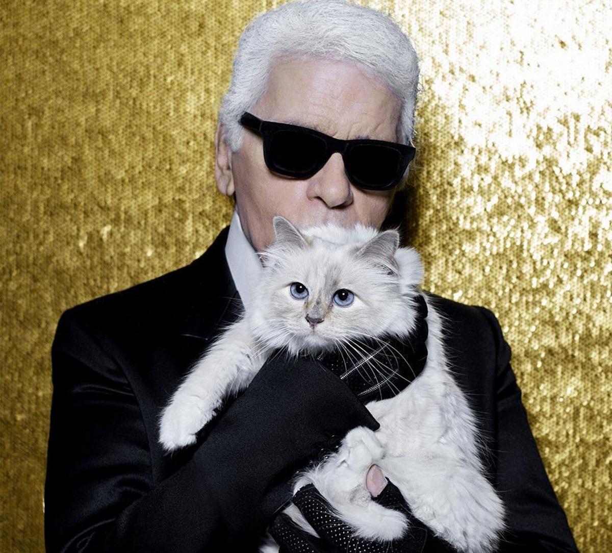 Choupette: Η διάσημη γάτα του Καρλ Λάγκερφελντ «αποχαιρετά» τον πατέρα της! Το συγκινητικό αντίο στα social media | tlife.gr